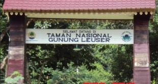 Taman-Nasional-Gunung-Leuser