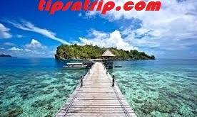 wisata-taman-nasional-teluk-cenderawasih.jpg
