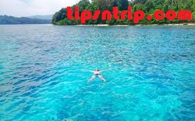 wisata-pulau-peucang-di-ujung-kulon.jpg